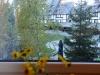 kopaonik smestaj apartmani snezni vrhovi 12 06